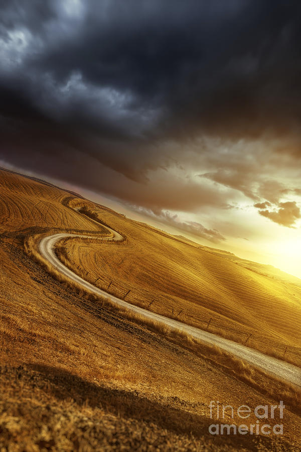 A Country Road In Field At Sunset Photograph