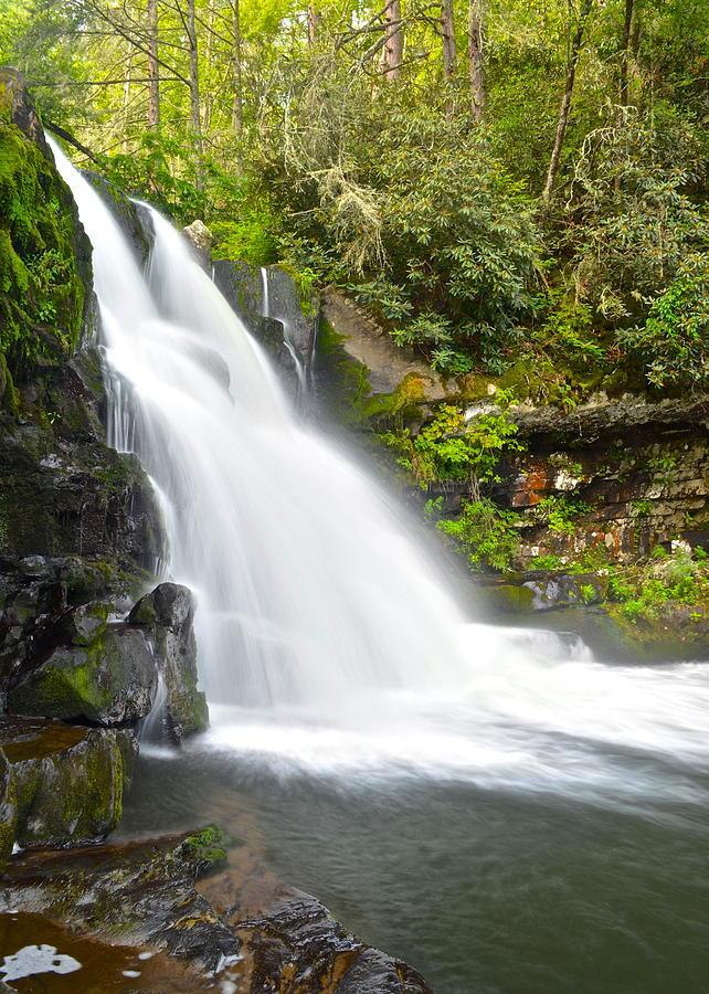 Abrams Falls Photograph