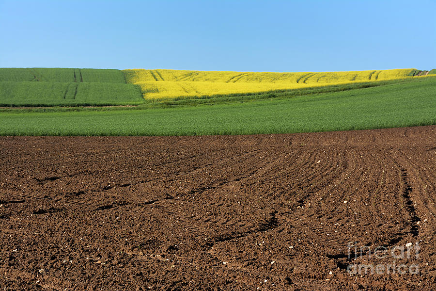 Tranquil Scene Photograph - Agricultural Landscape. Auvergne. France. by Bernard Jaubert