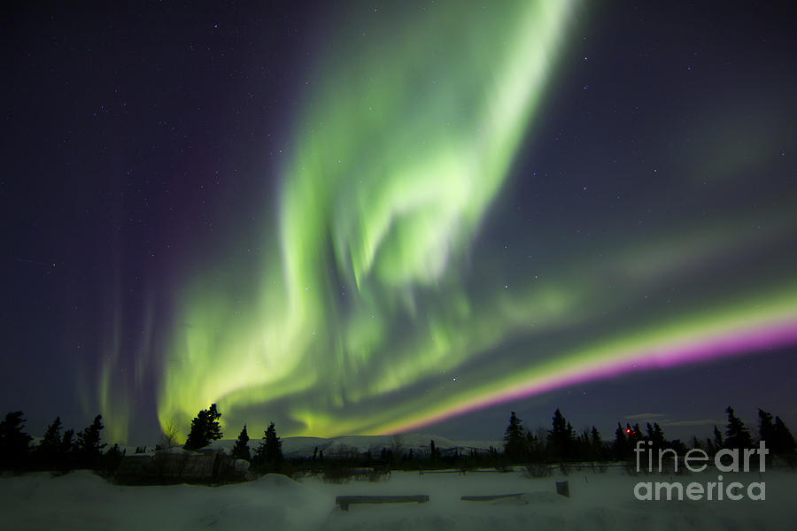 Aurora Borealis Over A Ranch Photograph