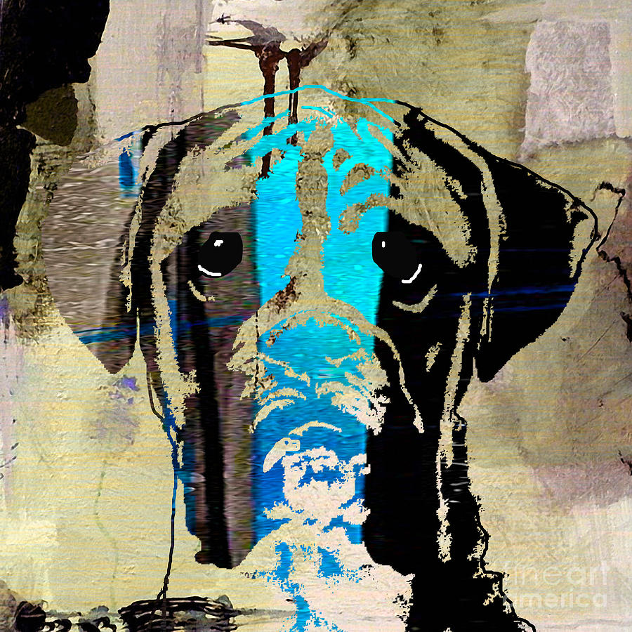 Boxer Mixed Media