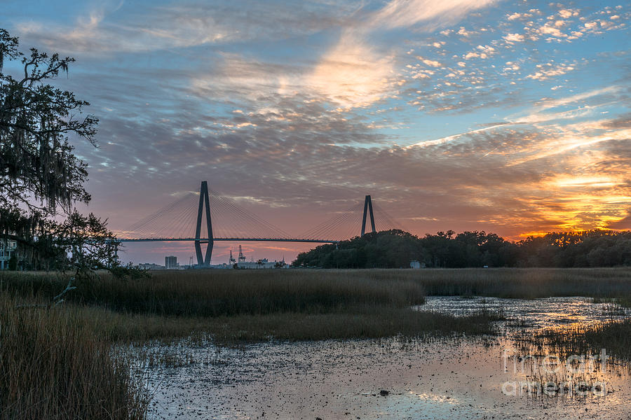 Charleston Cooper River Bridge Photograph