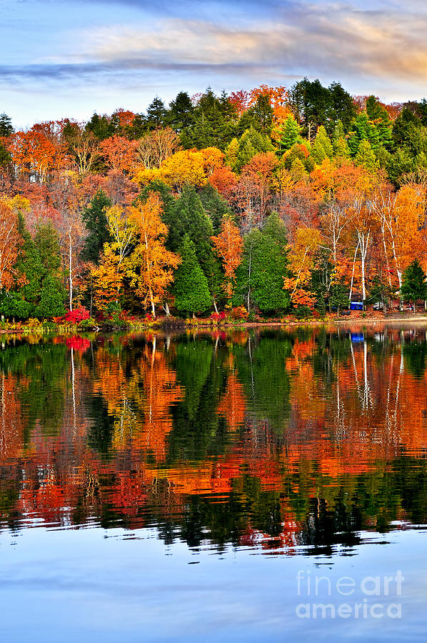 Fall Forest Reflections Photograph  - Fall Forest Reflections Fine Art Print