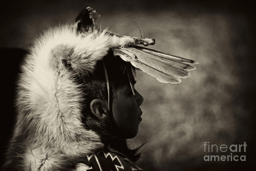 4 - Feathers Photograph