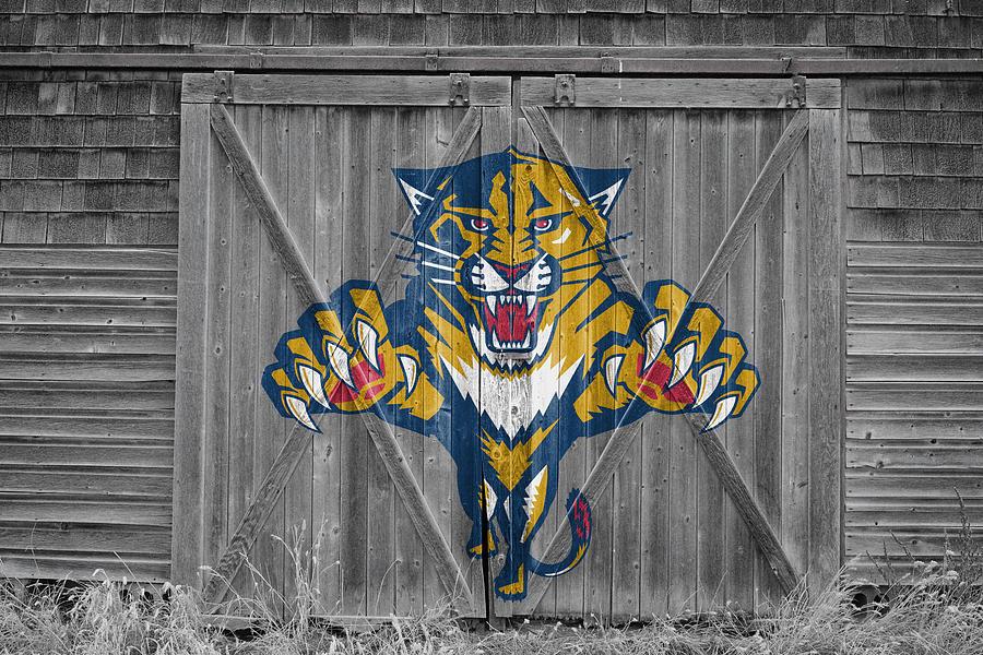 Florida Panthers Photograph