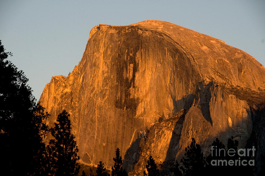 Half Dome, Yosemite Np Photograph