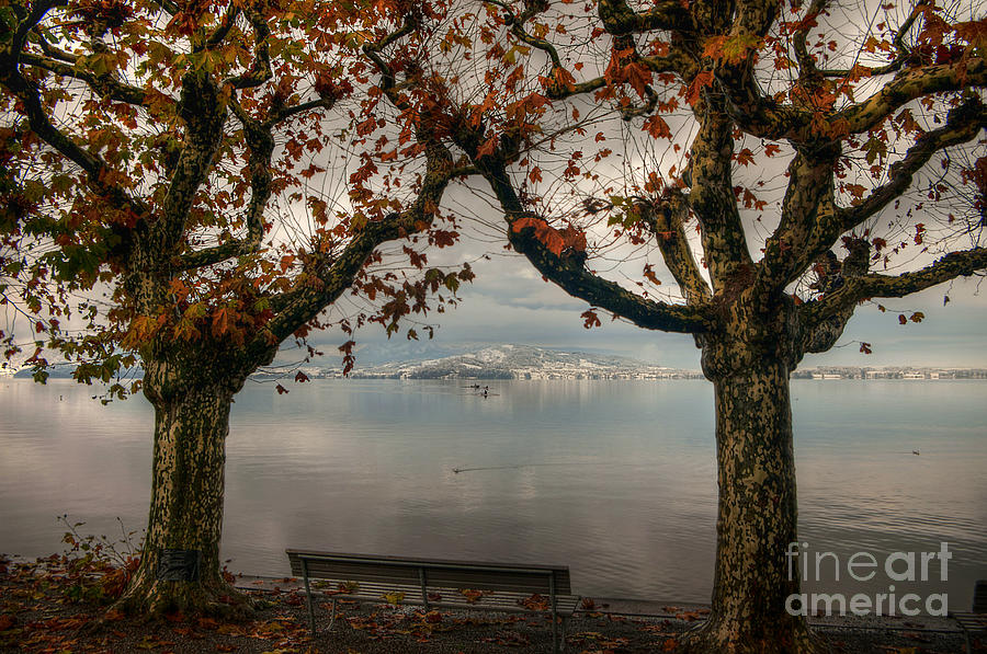 Lake Zug Photograph