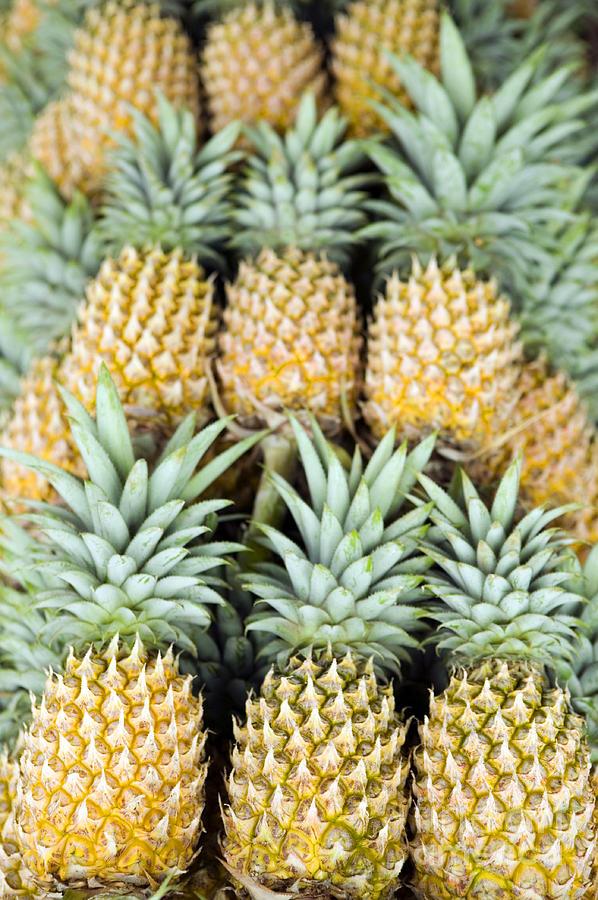 Organic Pineapple Photograph