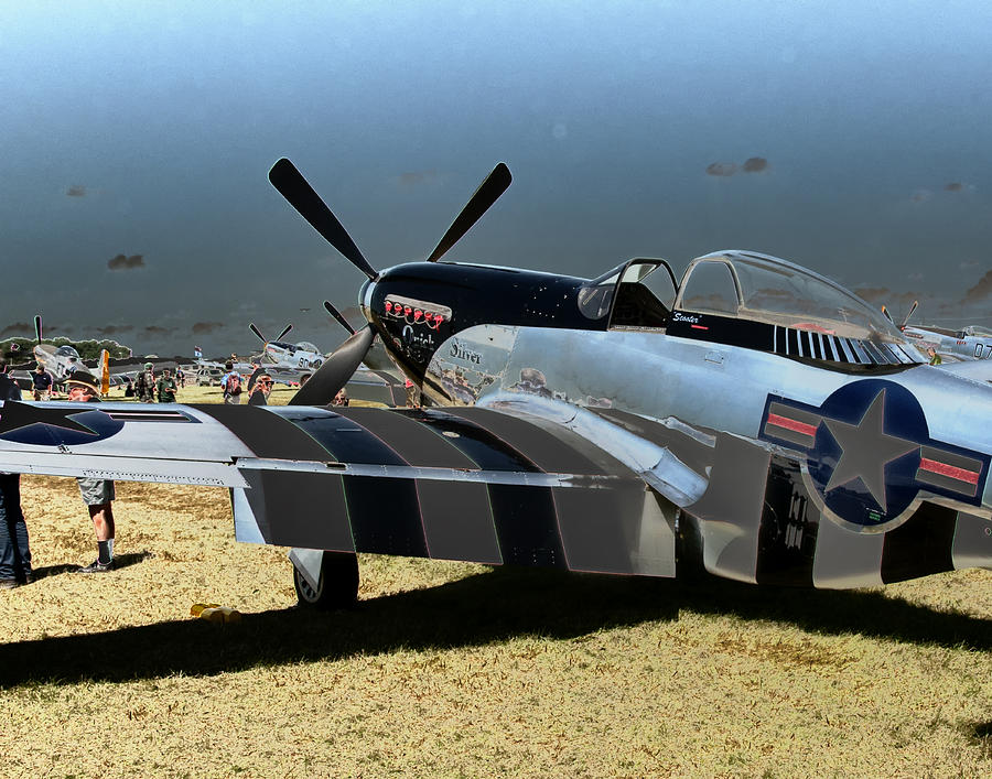 P51 Mustang  Photograph