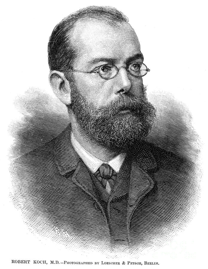 Robert Koch (1843-1910) is a photograph by Granger which was uploaded ...