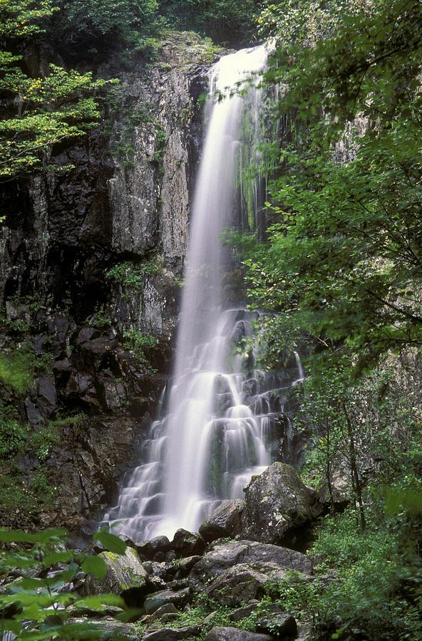 Ussuri Territory Photograph