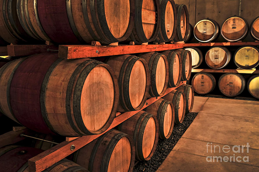 Barrels Photograph - Wine Barrels by Elena Elisseeva