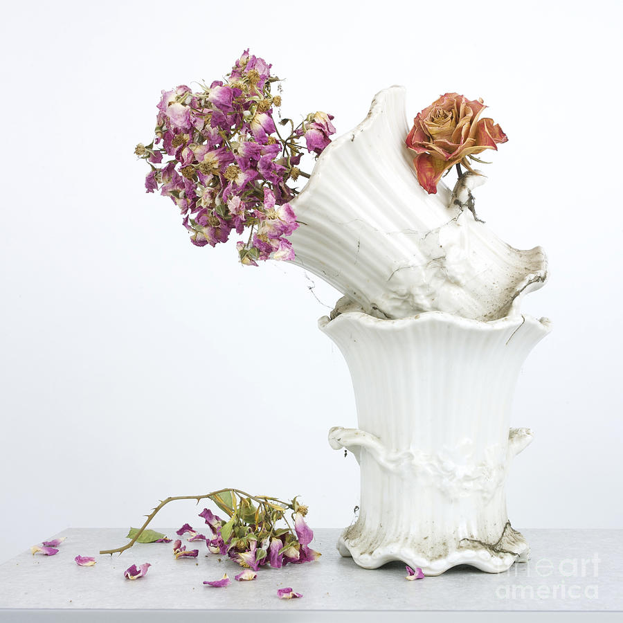 Studio Shot Photograph - Bouquet by Bernard Jaubert