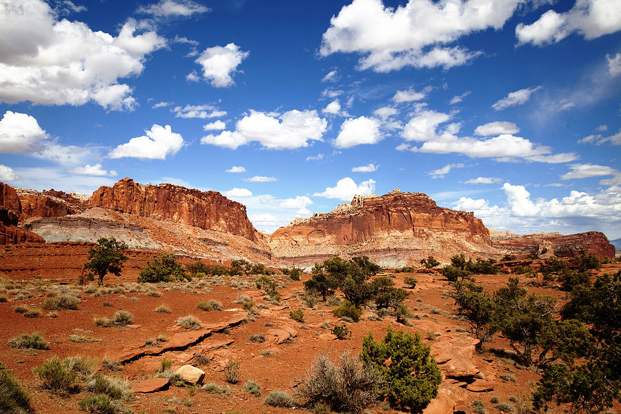 Southern Utah Photograph - Captiol Reef National Park by Mark Smith