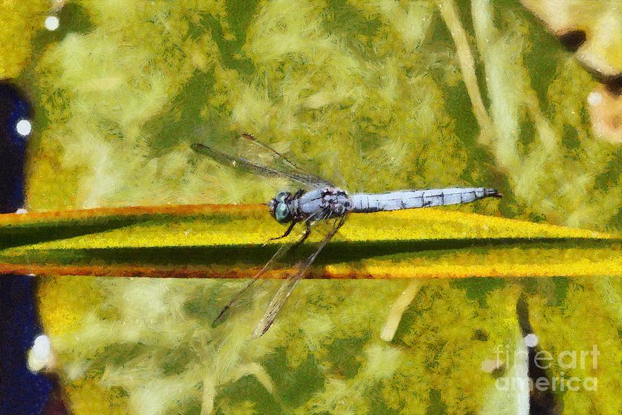 Dragonfly Painting - Dragonfly by George Atsametakis