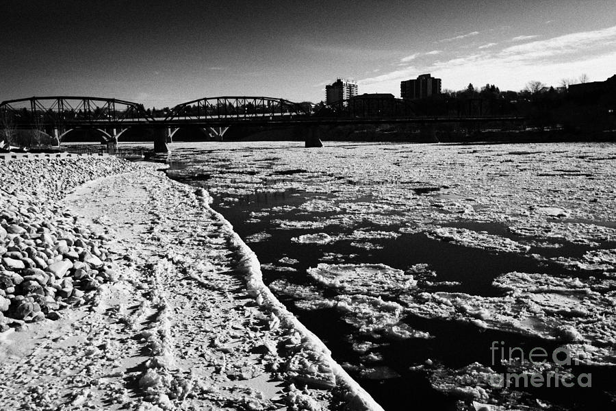 large chunks of floating ice on the south saskatchewan river in winter flowing through downtown Sask Photograph