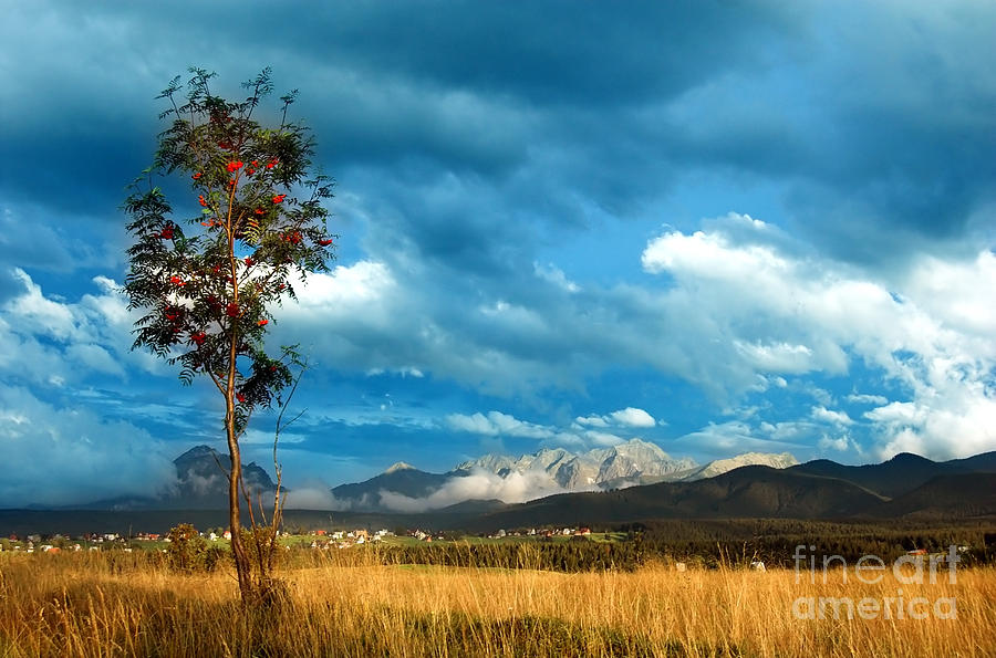 Mountains Landscape Photograph  - Mountains Landscape Fine Art Print