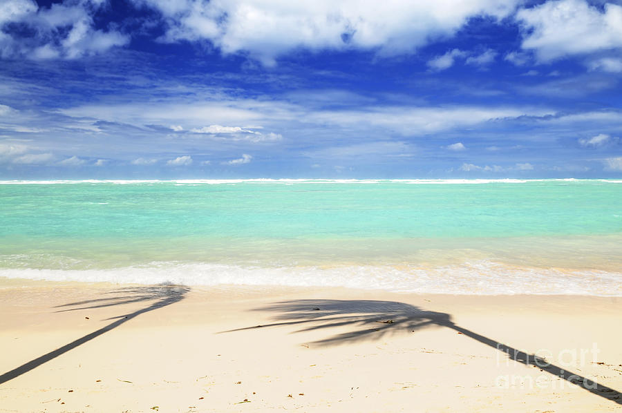 Tropical Beach Photograph  - Tropical Beach Fine Art Print