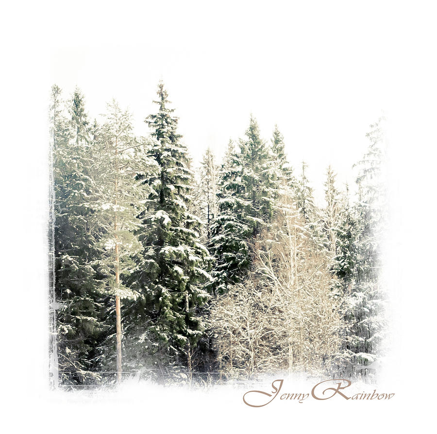 Winter Wonderland. Elegant Knickknacks From Jennyrainbow Photograph  - Winter Wonderland. Elegant Knickknacks From Jennyrainbow Fine Art Print
