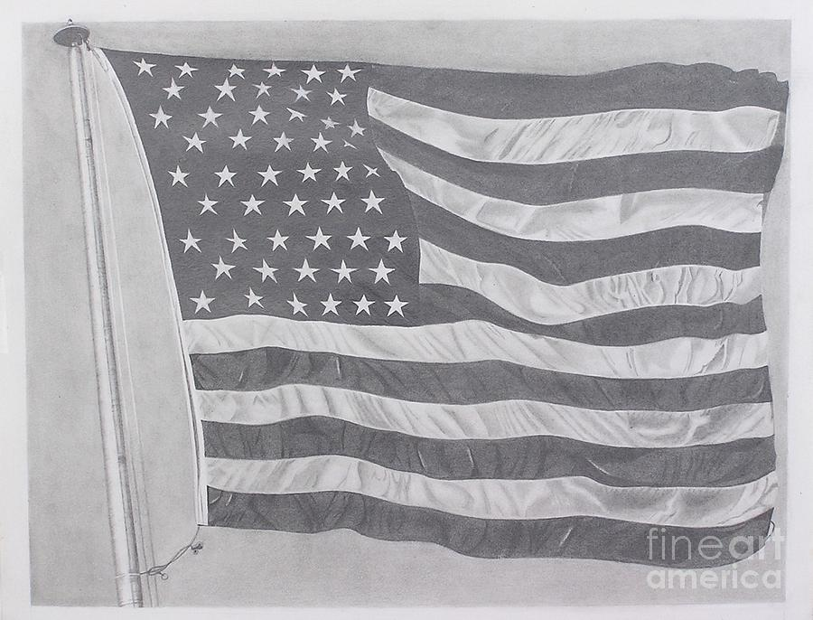 50 Stars 13 Stripes Drawing  - 50 Stars 13 Stripes Fine Art Print