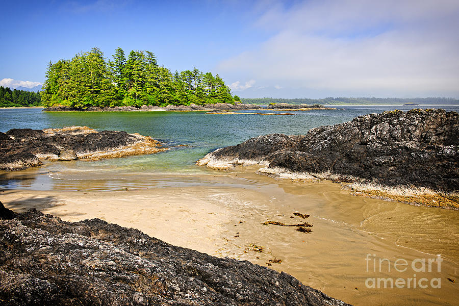 Coast Of Pacific Ocean On Vancouver Island Photograph