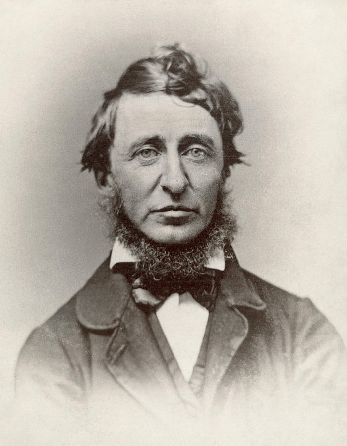 an introduction to the history of martin luther king and henry david thoreau Henry david thoreau was an oddball job quitter and ne'er-do-well who evolved into the bearded sage of literature, natural history, and civil liberties i wrote the adventures of henry thoreau: a.