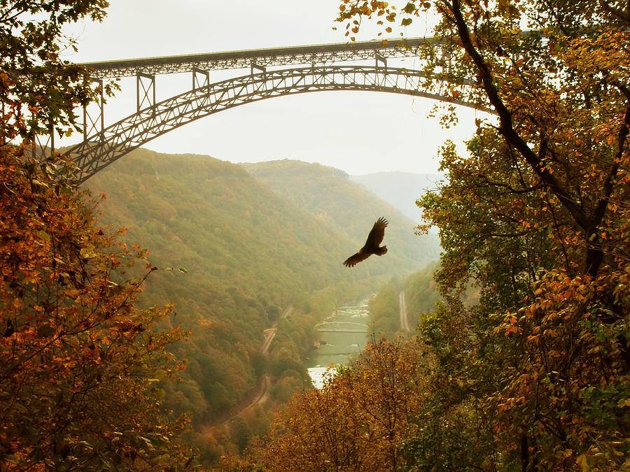 New River Gorge Bridge PhotographNew River Gorge Bridge Fall