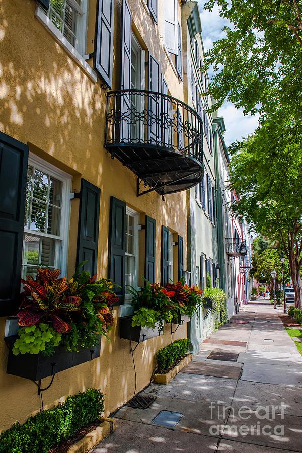 Rainbow Row In Downtown Charleston Photograph