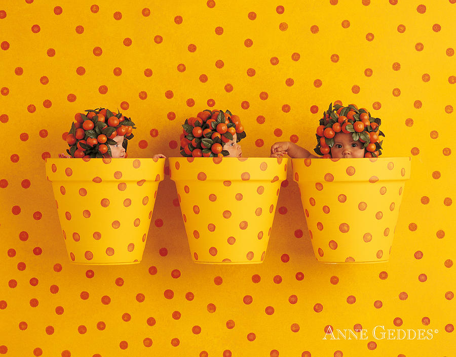 Oranges Photograph - Untitled by Anne Geddes