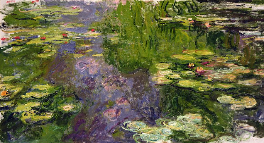 Waterlilies Painting  - Waterlilies Fine Art Print