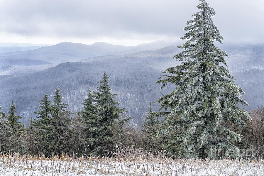 Winter Along The Highland Scenic Highway Photograph  - Winter Along The Highland Scenic Highway Fine Art Print