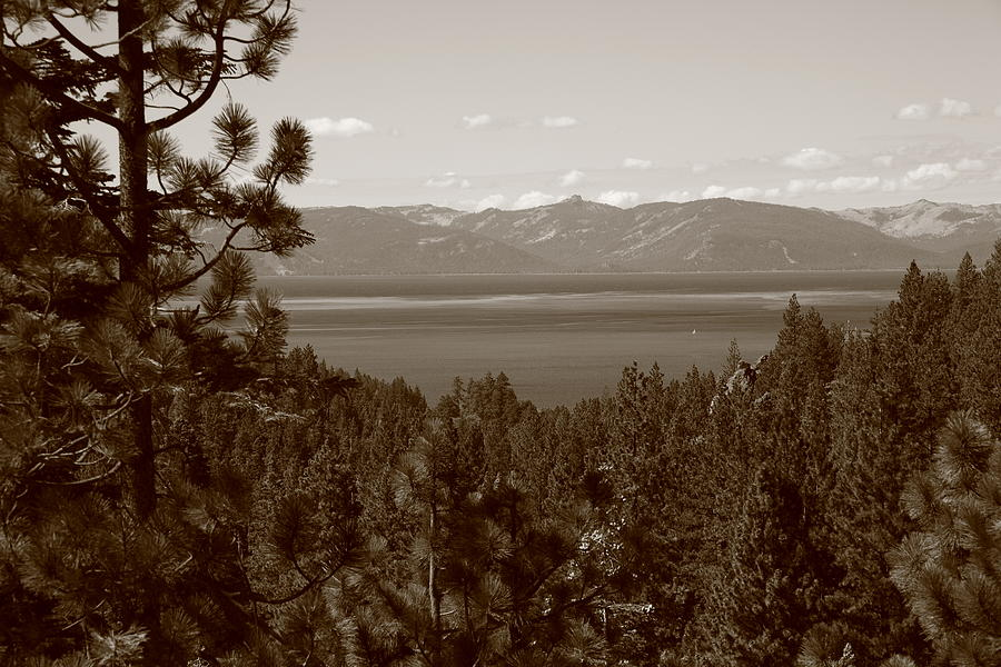 Alpine Photograph - Lake Tahoe by Frank Romeo