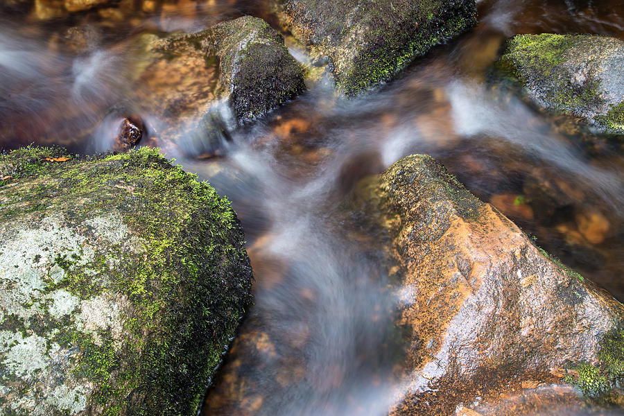 Landscape Photograph - Landscape Of Becky Falls Waterfall In Dartmoor National Park Eng by Matthew Gibson