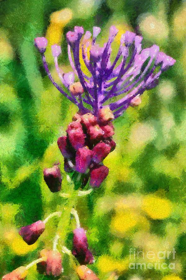 Tassel Hyacinth; Muscari Comosum; Blue; Purple; Flower; Flowers; Wild; Plant; Spring; Springtime; Season; Nature; Natural; Natural Environment; Natural World; Flora; Bloom; Blooming; Blossom; Blossoming; Color; Colour; Colorful; Colourful; Earth; Environment; Ecological; Ecology; Country; Landscape; Countryside; Scenery; Macro; Close-up; Detail; Details; Greece; Hellas; Greek; Artistic; Exterior; Outdoor; Outside; Paint; Painting; Paintings Painting - Spring Wild Flower by George Atsametakis