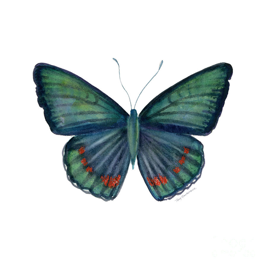 Teal Green Butterfly Painting - 82 Bellona Butterfly by Amy Kirkpatrick