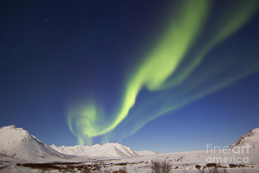 Aurora Borealis With Moonlight Photograph  - Aurora Borealis With Moonlight Fine Art Print