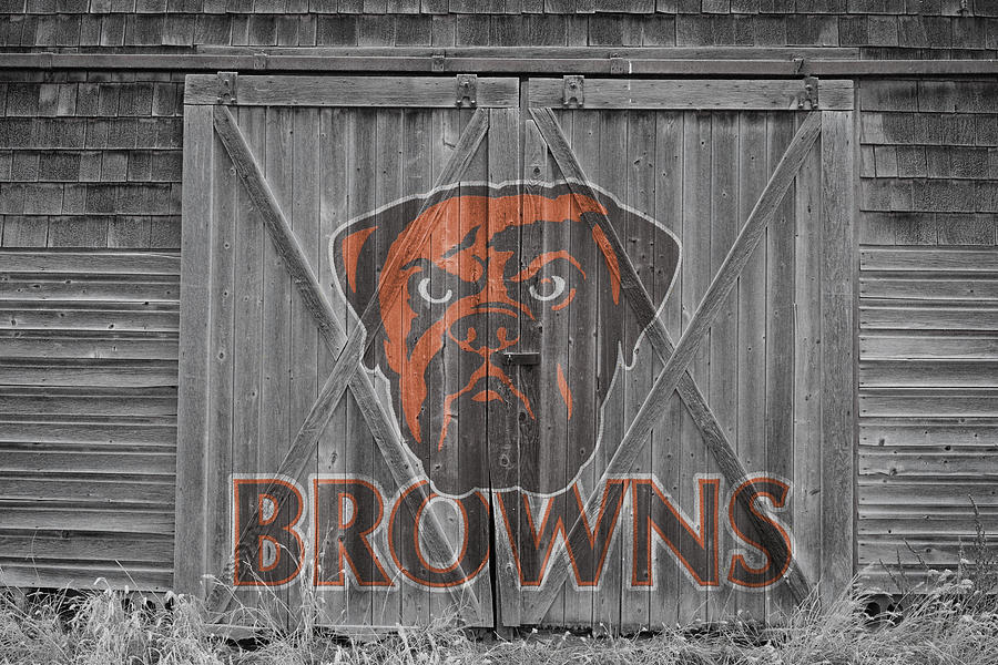Cleveland Browns Photograph