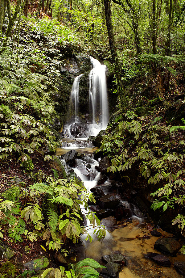 Environment Photograph - Waterfall by Les Cunliffe