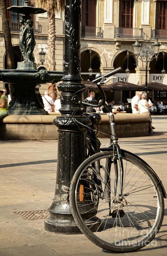 A Bicycle At Plaza Real Photograph
