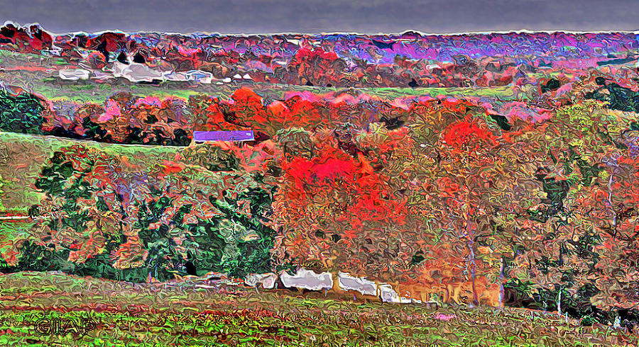 Autumn Photograph - A Birds Eye View by Brian Graybill