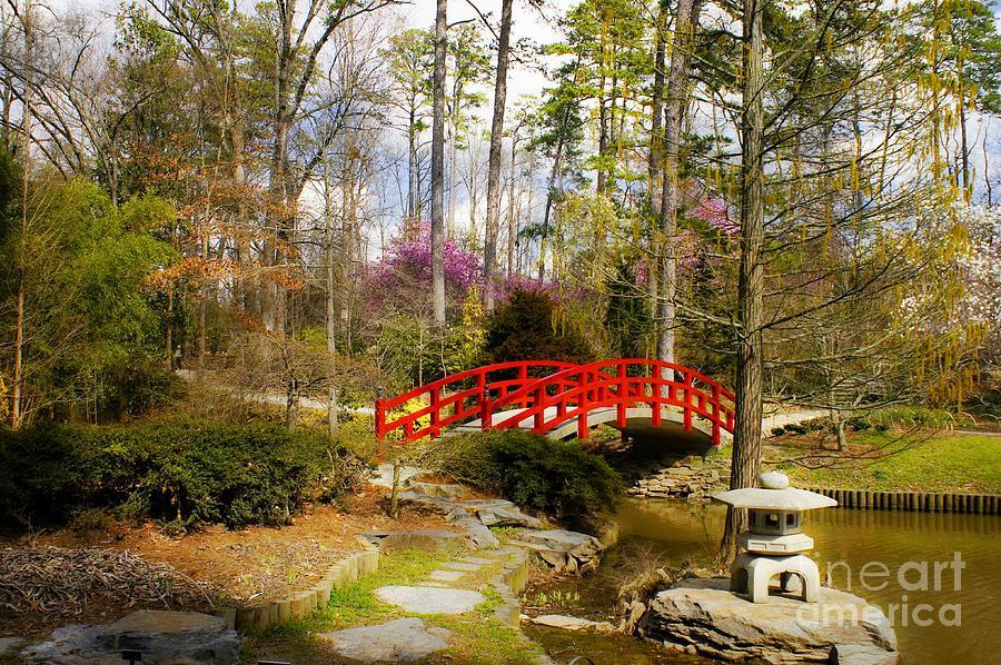 A Bridge To Spring Photograph