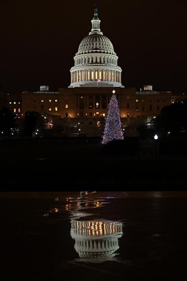 A Capitol Reflection Photograph  - A Capitol Reflection Fine Art Print