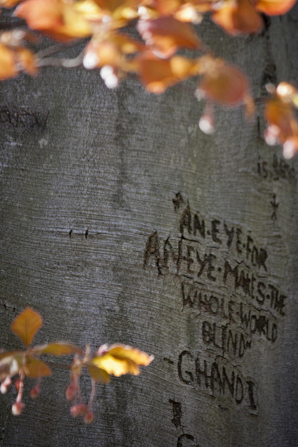 Carved quotes quotesgram