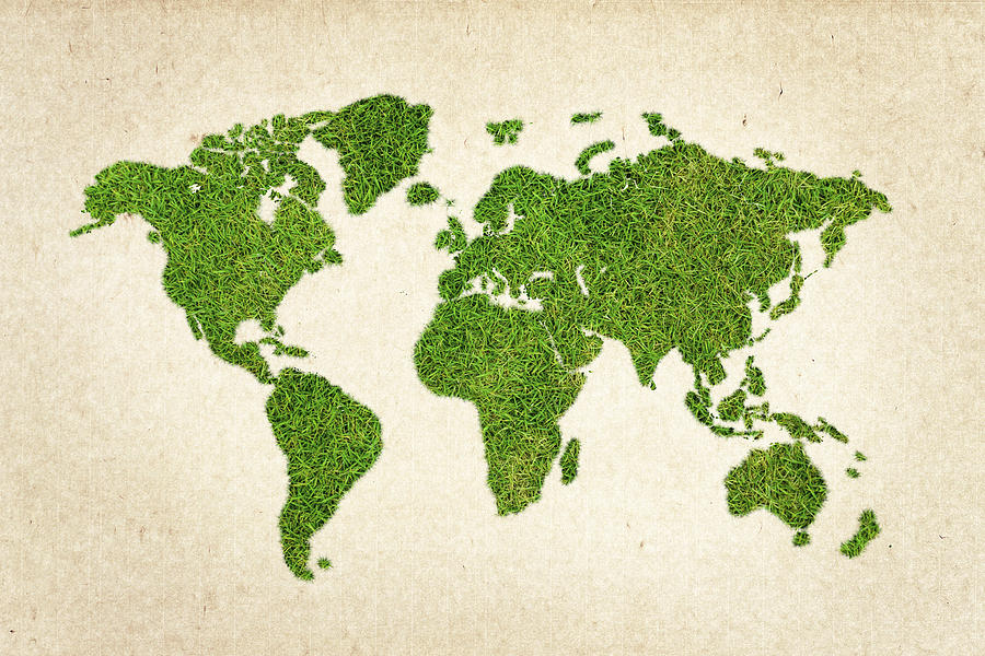 World Grass Map Photograph