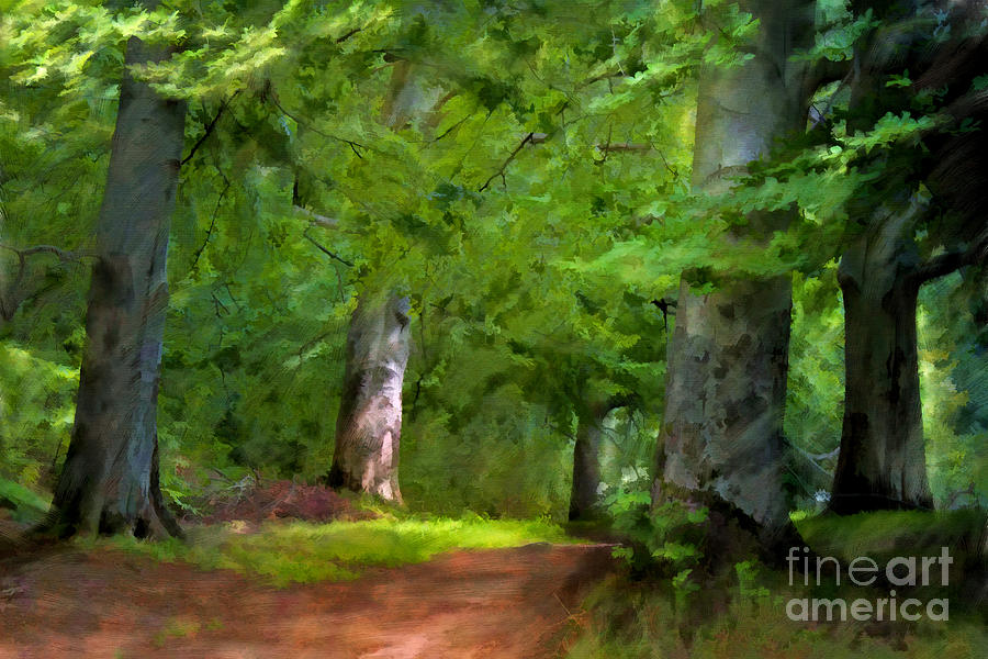 A Day In The Forest Painting  - A Day In The Forest Fine Art Print