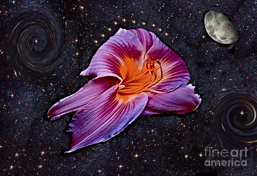 A Daylily Bloom Rockets To The Moon Photograph