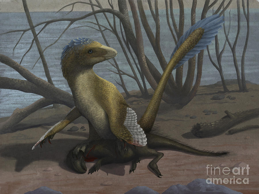 A Deinonychus Protects Its Kill Digital Art  - A Deinonychus Protects Its Kill Fine Art Print