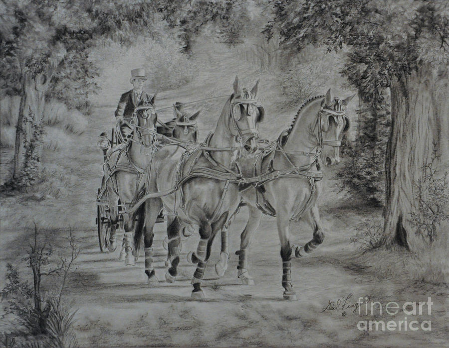 A Drive In The Country Drawing