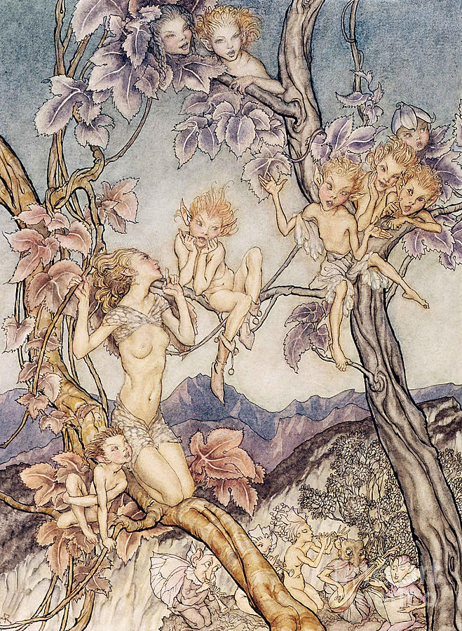 A Fairy Song From A Midsummer Nights Dream Drawing  - A Fairy Song From A Midsummer Nights Dream Fine Art Print