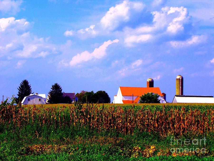 A Farm Landscape Photograph